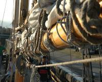 hms_pickle_rigging_big.jpg